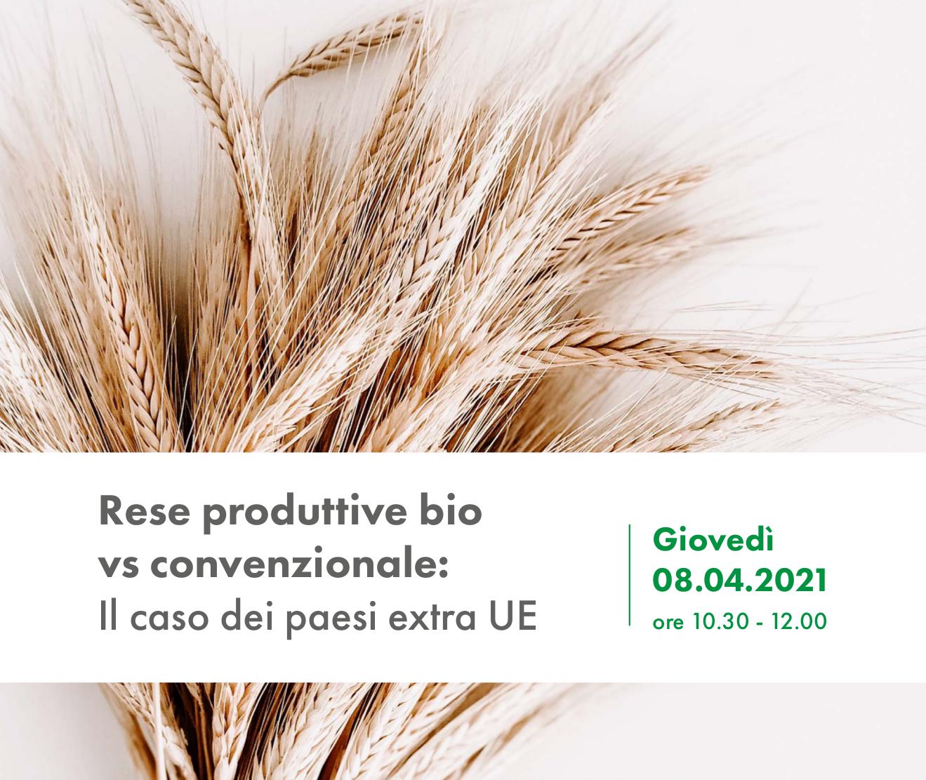 Rese produttive bio vs convenzionale: Il caso dei paesi extra UE