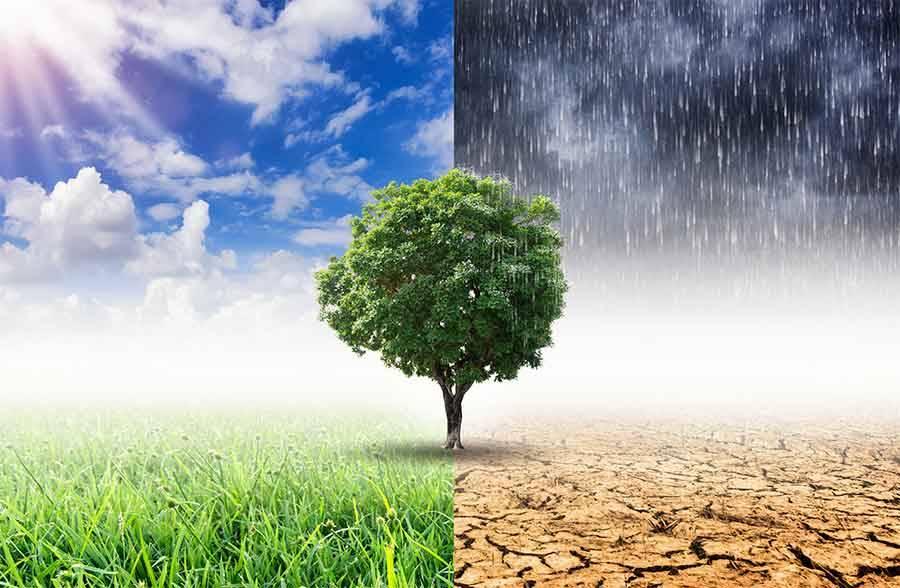 Mai sprecare una crisi. Dall'emergenza pandemica al contrasto all'emergenza climatica. Il contributo della Regione Emilia-Romagna