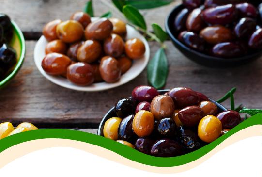 Le cultivar d'olivo da tavola e a duplice attitudine e il loro miglioramento genetico