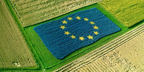 L'agricoltura italiana di fronte alla sfida del green deal europeo