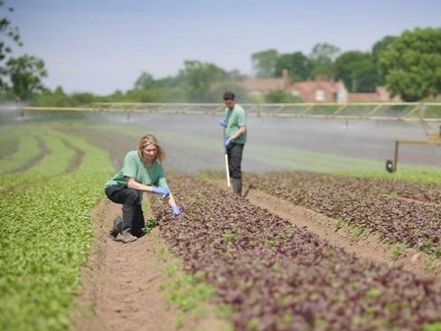 La carovana della buona agricoltura