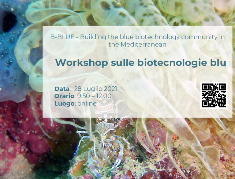 The B-Blue Project: biotechnologies from the Sea Innovation for sustainable blue growth