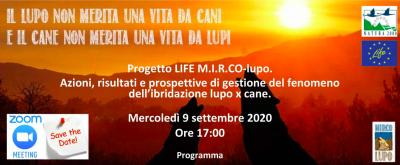 Risultati finali del progetto LIFE M.I.R.Co-lupo