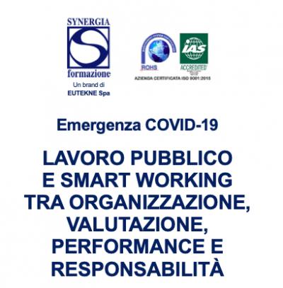 Lavoro pubblico e smart working tra organizzazione, valutazione, performance e responsabilità