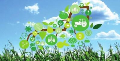 Il ruolo dei dati nell'agricoltura 4.0